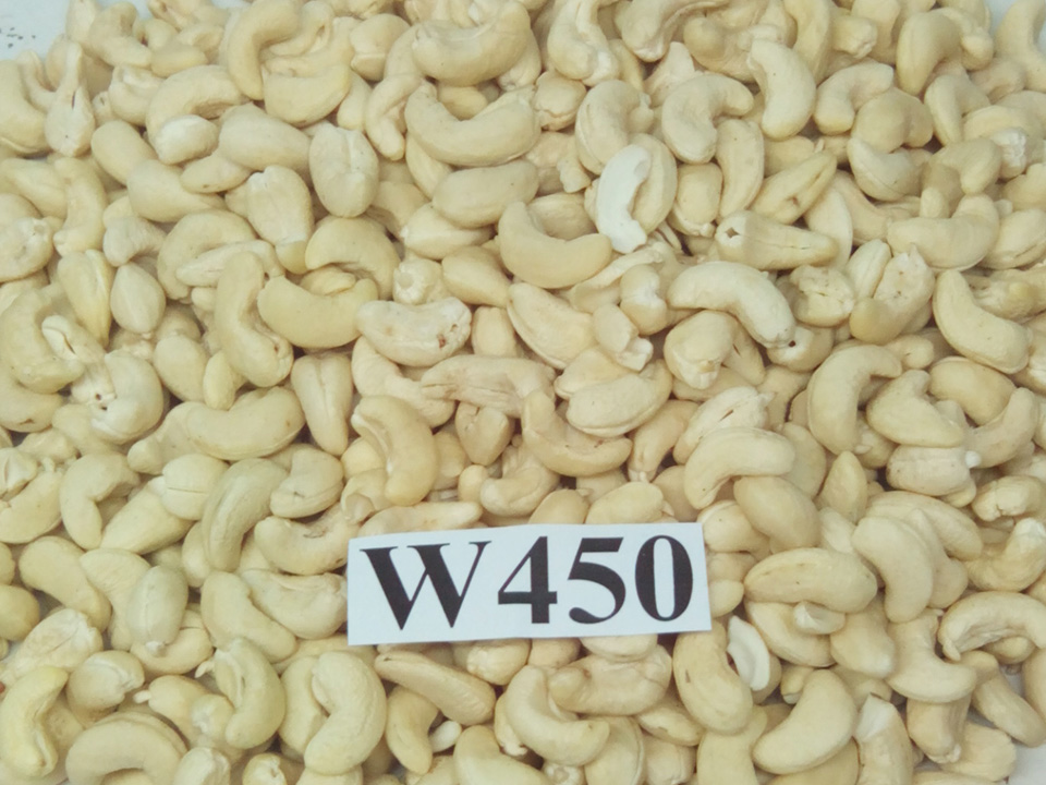 CASHEW NUTS WW450
